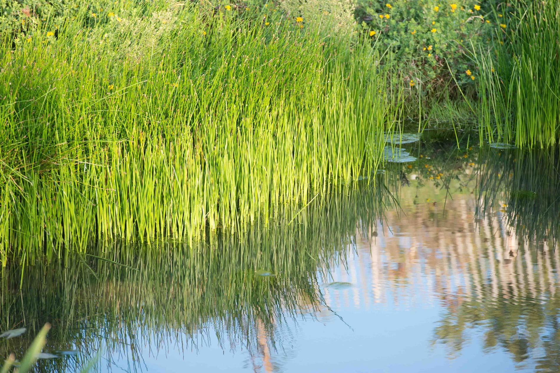 Signature Biodiversité • Diagnostic Performance Environnementale • Nature 3