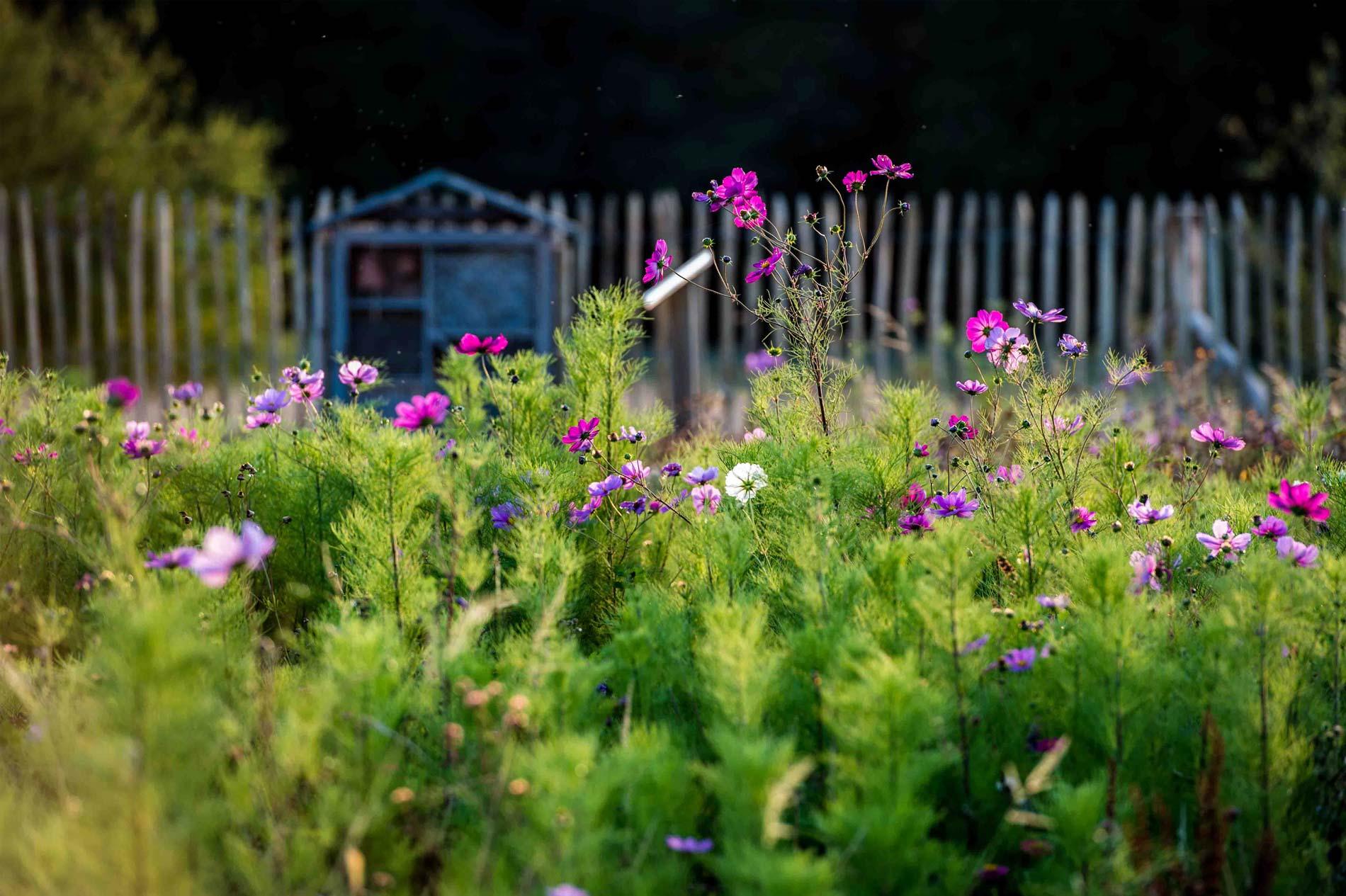 Signature Biodiversité • Concevons des projets respectueux • Nature 3